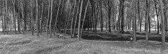2014_06_17_124840_000_Panorama_F